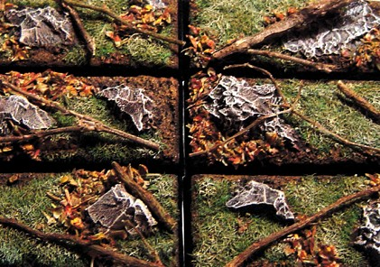 Photo: Autumn bases - Tutorial